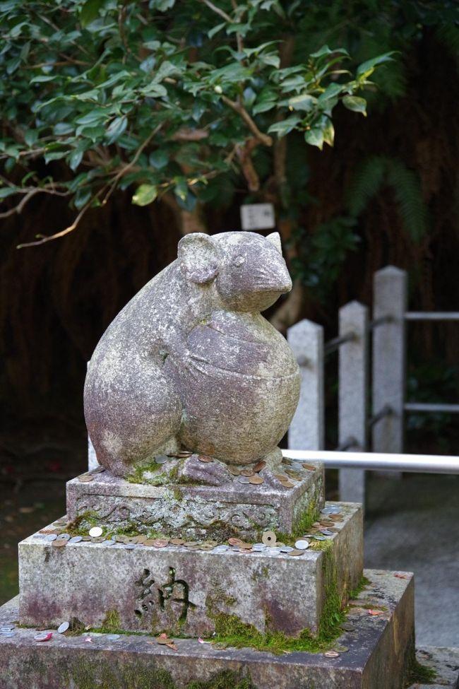 1月8日の夕刊に、以下の記事があり、さっそく行ってみることにしました。<br />「今年はねずみ年。京都・哲学の道の近くにたたずむ大豊神社には、こま犬ならぬこまねずみがいる。」<br /><br />※写真はこまねずみ。
