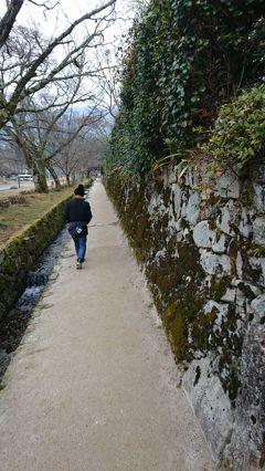 新春京都、滋賀にも足を伸ばす旅2