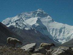 ヒマラヤ山脈 北面 大展望 チョモランマBC  2013年9月
