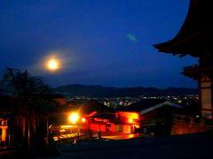 まさかの京都1人旅。ド素人、早朝寺巡りで再び迷子。
