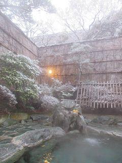 お正月山形温泉巡り 3泊4日 湯の沢温泉・銀山温泉・天童温泉