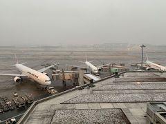 どこかへマイルで広島へ Vol.0 [羽田前泊編](2019年2月)