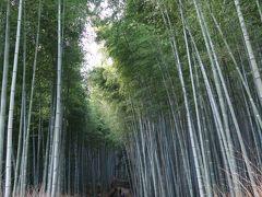 京都街歩き 2日目