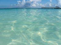 年越しメキシコ個人旅|カリブ海リゾートカンクン&プラヤデルカルメンで食べ飲み夫婦旅2