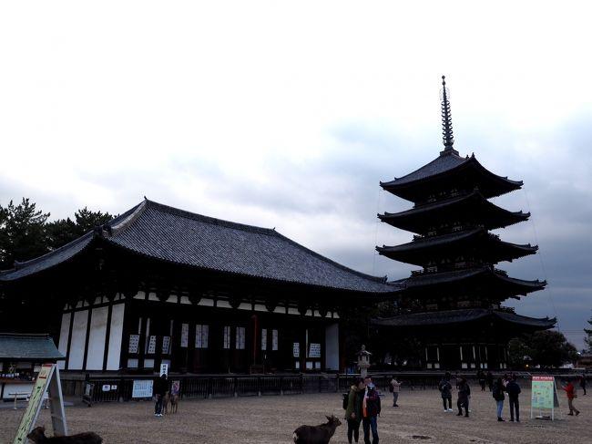 JR奈良駅近くの「なら100年会館」そこでのコンサート、電話でチケットを申し込んでいました。<br />そのチケットを取りに行く必要があり、奈良に出かけることにしました。<br />興福寺、2018年12月、中金堂の落慶をきっかけにお参りしたのが、最後です。<br />そんなこともあり、久しぶりに興福寺をお参りすることに。<br />東金堂と国宝館を中心に周りましたが、この二堂はもちろんのこと、この日観光客も少なく、古都の雰囲気をたっぷり味あうことができました。<br /><br />【写真は、東金堂と五重塔です】