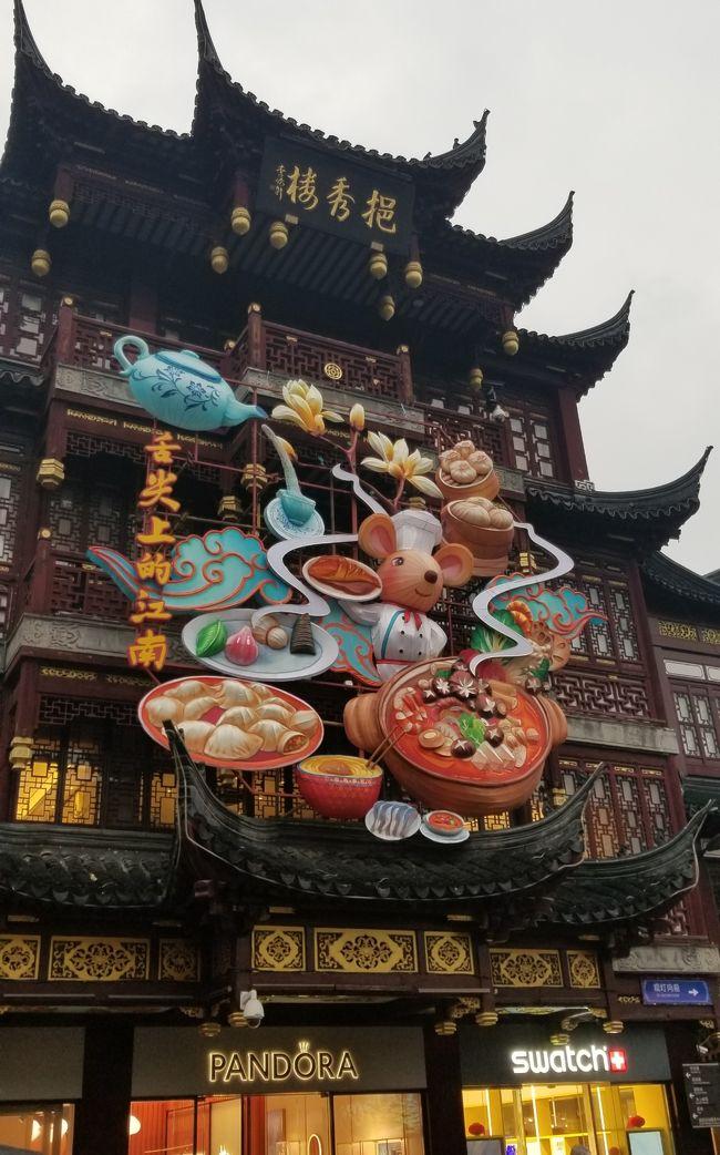 昨年は春節前に香港にいったので今年もと思っていましたが、香港が色々と大変なので初めて上海に行きました。<br />知り合いは上海と言うだけで引いてしまったけど、相方さんは高校の修学旅行で北京に行ったことがあるらしく、久しぶりの中国にウキウキでした。<br />春節のディズニーランドを楽しみにしていましたが、イベントの始まりは13日からと1日違いで残念でした。<br />電車の乗り降りのマナーが椅子取りゲームみたいで少し疲れましたが、食事もおいしく怖いかなと思っていたトイレも綺麗でした。<br />