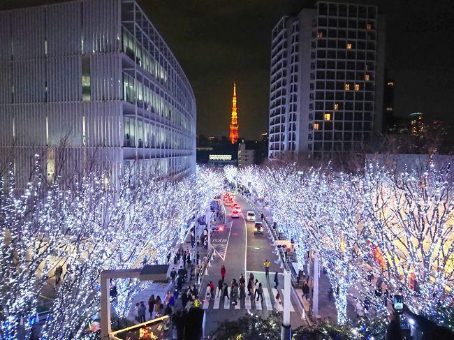 今年は台風のあたり年(意味合い的には「はずれ年」)、2つの旅行の計画で15号と19号にぶち当たり、なんだか消化不良。<br />そこで2019ファイナルとして、近くて遠い東京と横浜の王道な観光地をじっくりと回ってみたくなり。<br />赤坂に泊まる、夜景を撮影する、食にこだわる、高所にもいく、こんなざっくりコンセプトの中、出掛けてきました。<br /><br />横浜の夜の部!夜景撮影難しいですね~<br />赤レンガ倉庫は人ひとヒト!大変でしたw<br />早々に横浜を切り上げて、六本木へ<br />