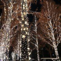 京都でクリスマスと年末年始☆