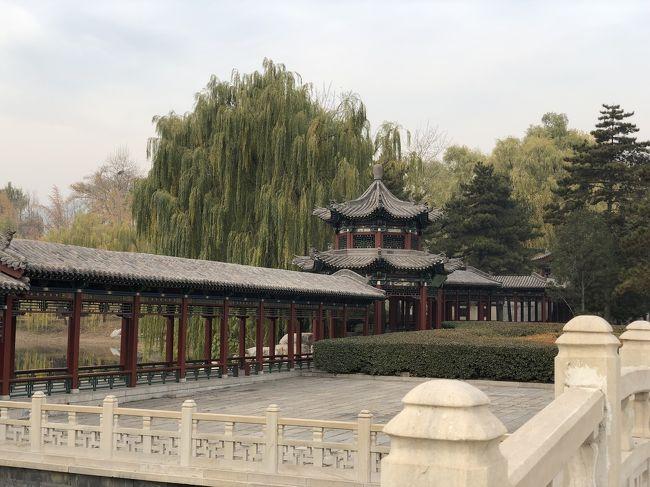 若くなくても何とかなりますねん!おばあちゃん一人中国へ行く。3日目