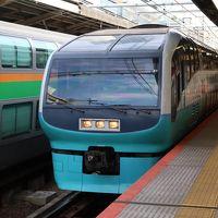 【鉄道のみ】引退が迫るスーパービュー踊り子号グリーン車を楽しむ。サフィール踊り子号も見たよ。