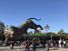 9歳子連れ★カリフォルニア州旅行④★サンディエゴ動物園とラホヤコーブ