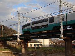 【鉄道のみ】スーパービュー踊り子号グリーン車を楽しむ。帰路は河津から横浜。