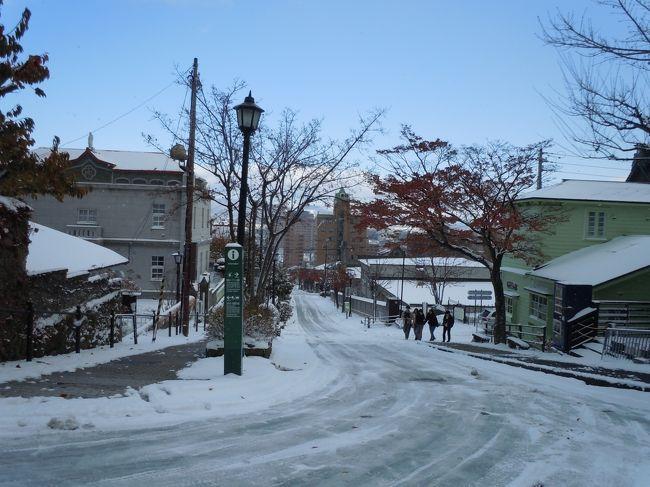 湯の川温泉のホテルを出発して2日目は函館観光です。何度も来ていますが、雪の函館は本当に久しぶりでした。元町の教会も坂道も夏とは雰囲気が違って楽しめました。朝市にも立ち寄りましたが寒さと強風で買い物をする気になりませんでした。五稜郭ではタワーに上がって眺望を楽しみました。新しくなってから随分と眺めがよくなったと思います。あまり人も多くなくてゆっくり出来ました。初めて行った昆布館ではいろいろと試食をしたり買い物をしたりしました。おぼろ昆布と懐かしい酢昆布を買いました。お昼は大沼プリンスホテルでお楽しみのランチです。<br /> 雪景色は珍しくて嬉しいけれど寒いのには参ります。