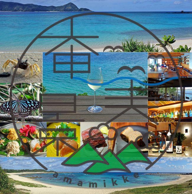 1月でも奄美の海は美しい1-ネストアット奄美ビーチヴィラ宿泊、土盛海岸、あやまる岬、崎原ビーチ、打田原ビーチ、ばしゃ山村AMAネシアで鶏飯-