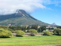 南部アフリカ3ヵ国周遊の旅7日間 〜野生動物と滝と喜望峰〜 その7