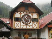 美しきアルザス地方とドイツ黒い森地方を巡る8日間 10