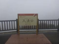 8人で行く秋の箱根(2014年11月)はつ花本店、大涌谷、メルヴェール箱根強羅、かまぼこ・ちくわ作り