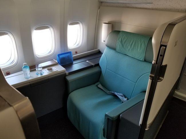 大韓航空はワイドボディー機には全てファーストクラスの設定があり、特典航空券も取りやすいので、頑張れば庶民でもファーストクラスに乗ることができました。せっせとSKYPASSでマイルを貯めていました。<br />ところが、大韓航空は2019年6月1日よりファーストクラスサービスを縮小することとなりました。その上、2021年4月1日よりマイレージプログラムの改定が予定されており、ファーストクラスの必要マイル数が1.5倍になるそうです。<br />今しかない!ということで、大韓航空のマイルを有効活用することとしました。最後のチャンスです!!ファーストクラスに乗ることが目的の旅となりました。<br />行先として定めたのは、東南アジアでも飛行時間が長く、ファーストクラス設定のあるシンガポール。ファーストクラスに乗ることが目的の旅ですので、他のことにはお金はかけていません。<br />機材変更が数回あり、ビジネスクラスにダウングレードされる提案がありましたが、ファーストクラスに乗ることが目的のため、羽田-金浦+仁川-シンガポールになってしまいましたが、往復ソウルに寄ることができ、機材も最新の747-8だったので結果OKでした。都度対応していただいた大韓航空さんには感謝です。<br />ソウルとシンガポールに分けて掲示します。こちらはシンガポール編です。