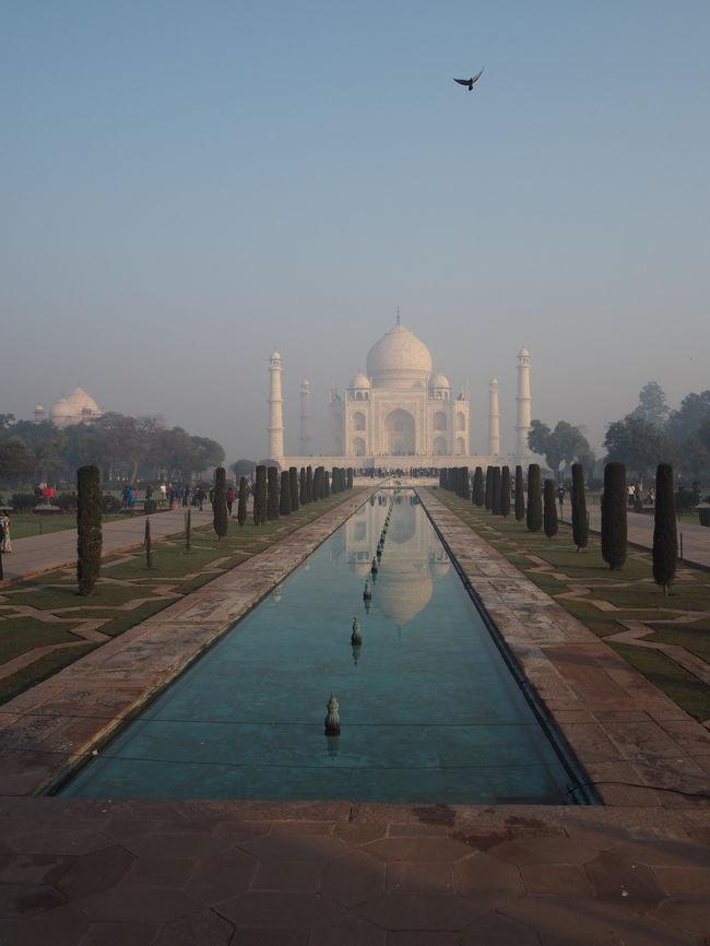 タージマハルに行ってみたいとゆう気持ちは前々からあったけど、何となく行ったことなかったインドへついに行くことに!!<br /><br />しかし、旅の相方がインドには行きたくないと言い張るので母を誘い行くことに。友達にインドに行くことを話したら友達も前々からインドに興味はあったとのこと。一緒に行こうとなり、どうせなら友達の母も誘っていざ4人で!!<br /><br />インドは何かと不安だし、母親も一緒だったからツアーで行くことに。ホテルはデラックスクラスのものをチョイス。<br /><br />あとはビザを取得しなければならないのだけれども、これが非常にめんどくさくて骨折り作業でした。インド行きを諦めたくなるほど。仕事も忙しい時期でストレス過ぎて腰痛になるほど。。。<br />母と二人なら完全に諦めていたところ、友達と何とか協力して無事取得!!<br /><br />いざ、インドへ!インドの空港では母が迷子になる珍事件が!友達と30分くらい探したけど、見つからず、電話もつながらず途方に暮れていたら、入国審査のゲートで女子大生2人に無事保護されていてやっと合流。いつどこにいても迷惑かける母。だからあんまり一緒に海外旅行に行きたくないんだとゆうことを思い出した。<br /><br />そんなインドの幕開けでした。