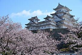 2019 さくらの名所を巡る旅《Part.5》~威風堂々とそびえる白鷺の天守・姫路城登城記~