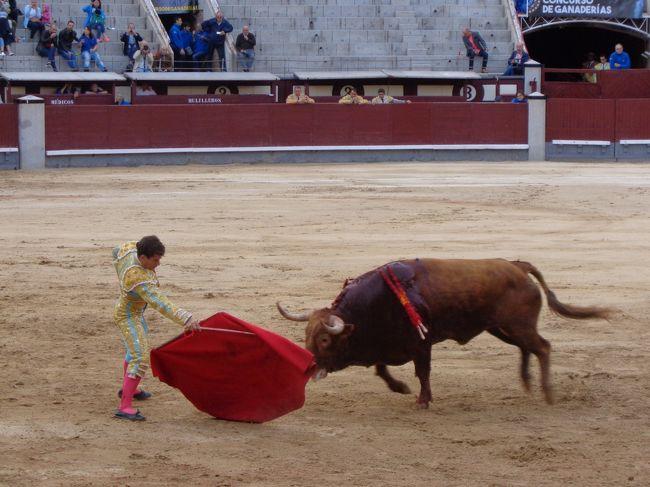スペイン2日目、お昼過ぎまでトレドの町歩き。 夕方からはマドリードに移動して、闘牛を見物しました。<br />スペインの風土に触れた1日、楽しかったです。<br />