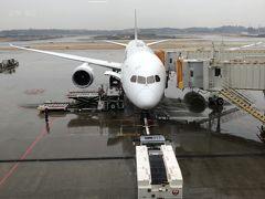 2020年1月 旧正月のクアラルンプール4日間- 成田アメリカン航空ラウンジ、JALビジネス搭乗編
