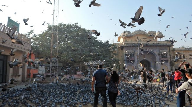 年末年始の初インド一人旅★DAY2後編 歩いてジャイプール(シティパレスと最高のラッシー)