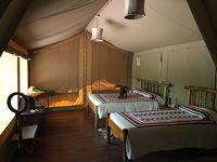 """【現地速報】ロンドン・ナイロビ出張(その30) おまけのマサイマラ、""""Basecamp Masai Mara"""" にチェックイン!"""