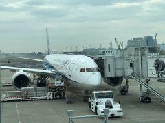 2020年1月北海道鉄道旅行1(ANA便乗り継いで函館空港へ)