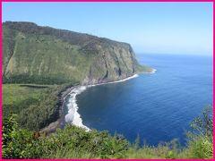 ハワイ19日間(4)ハワイ島一周ツアー(前)TEXドライブインのマラサダと聖地ワイピオ渓谷