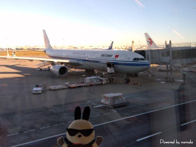 タイへの弾丸旅....<br /><br />航空券の安さに釣られて中国国際航空の北京経由便で航空券を購入してしまう。それもビジネスクラスで。<br /><br />ネットでの評価では「搭乗前からそこは中国」だとか「機内食が不味くて食えない」など言われていたが....<br /><br />往路<br /> 羽田~北京<br /> 北京~スワンナプーム(https://4travel.jp/travelogue/11595106)<br />復路<br /> スワンナプーム~北京(https://4travel.jp/travelogue/11606866)<br /> 北京~羽田(https://4travel.jp/travelogue/11610132)<br /><br />計4レグ分を機内食メインで記録を残したい。<br /><br />まずは1レグ目の羽田~北京