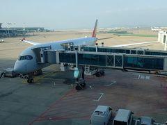 兎に角飛行機に乗りたい!休暇間取れない!じゃあ手軽な海外と言う事でシンガポールへ行ってきました
