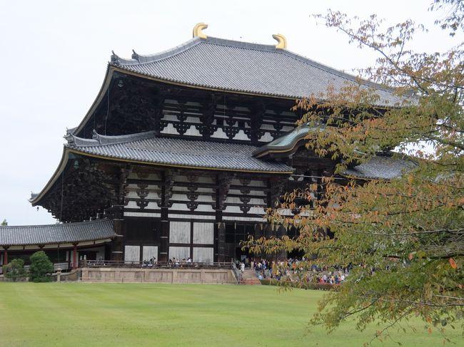 奥さんが奈良に行ったことがない、というので、2019年の11月、文化の日をはさんで奈良に行ってきました。<br />10年くらい前に行ったときと比べて、すごく外国人観光客が増えたなあという感想です。それでも鹿は変わりなく、でもときどきロックオンで迫ってくるので、ドキドキします。ざっと、街歩きをしてきました。<br /><br />東京駅 新幹線<br />↓<br />京都駅 近鉄特急(特急券が要ります)<br />↓<br />近鉄奈良<br /><br />宿泊は、ホテル日航奈良に泊まりました。<br /><br />