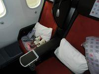 JALで伊丹~羽田&成田~ボストン(プレミアムエコノミー)◆ボストン・ナイアガラ・プリンスエドワードの旅《その1》