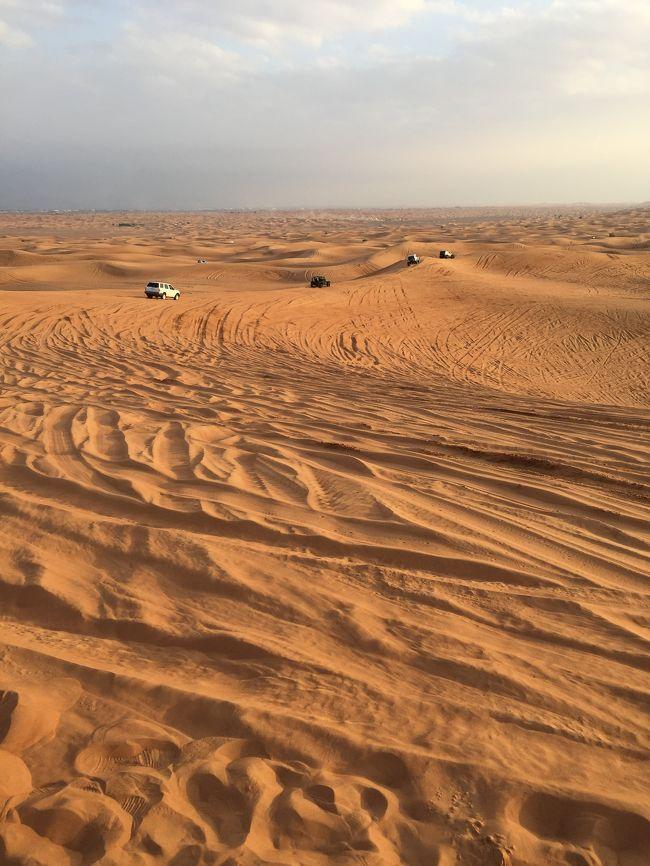 1月23日から4泊5日の添乗員付きトラピックスツアーです。<br /><br />同行人数は10人でヨット仲間の旅行です<br /><br />初日にオプションでデザートサファリを予約しました、4WDのランクルで砂漠の中を爆走します、そのあとベリーダンスを見ながらビュッフェバイキングです、お値段は15000円ですがおススメです。<br />2日目はアブダビ観光、3日目にブルジュ ハリファに登りました、夜景が綺麗でこれもおススメです、ツアーに付いてましたが個人で買うと5000円するそうです。<br /><br />普段はツアーは使わないのですが人数が多かったのでツアーで良かったと思いました。