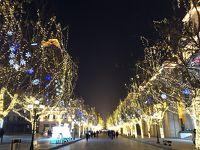 極寒ハルビン 春節の氷雪代世界・雪彫刻芸術博覧会 5日間 4日目