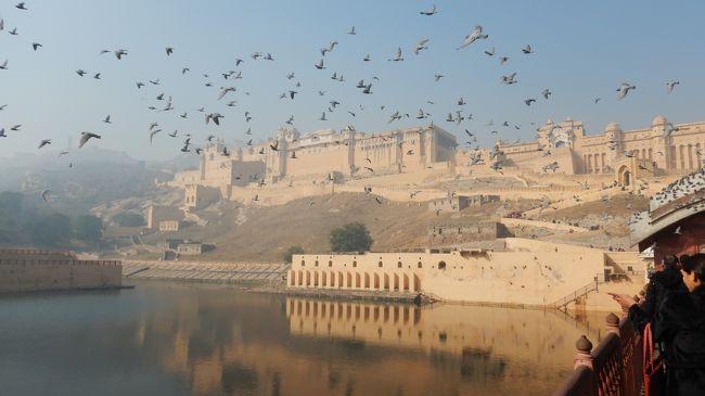 年末年始の初インド一人旅★DAY3前編 バスでジャイプール(アンベール城⇒ジャイガル要塞)