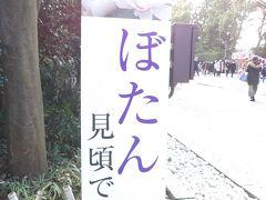 鶴岡八幡宮神苑ぼたん庭園の看板と道標