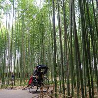 初秋の近畿三県、二泊三日のドライブ旅行2019 part③「六甲山~京都嵐山へ」
