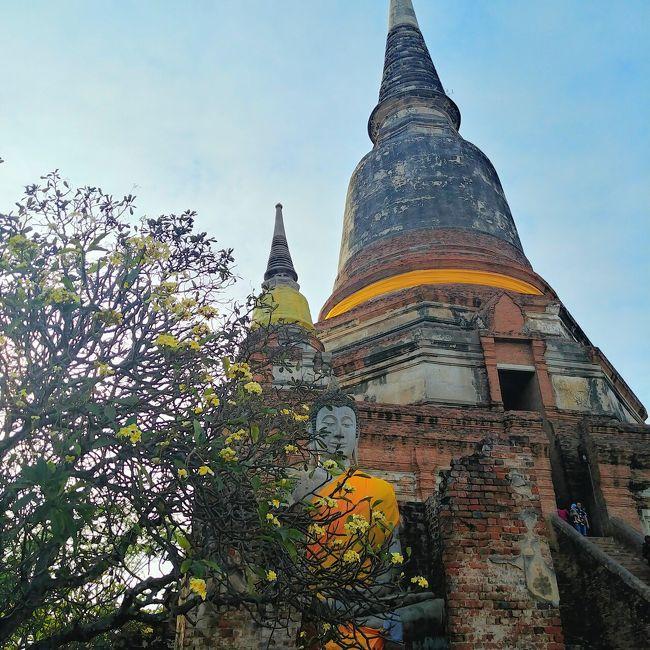 春節の連休を利用して、タイひとり旅に行ってきました。初めてのタイ訪問です。<br /><br />3泊5日で主にバンコク(少しアユタヤ)を観光。遠い場所は半日•一日ツアーを利用し、自分で行けそうな所は自力でまわることにして、短い日程でも効率良くタイを満喫することを目指しました!<br /><br />旅行記は全部で6つの予定です^^<br />Part1: 出発~ホテル、ナイトマーケット<br />Part2: ピンクのガネーシャ、ワットパクナム<br />Part3: 三大寺院<br />Part4: メークローン市場、水上マーケット<br />Part5: アユタヤ<br />Part6: エラワン美術館、帰国