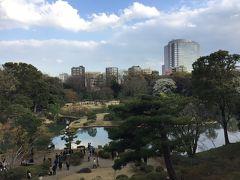 桜2019 六義園は立派な日本庭園でした