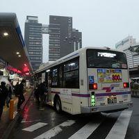 徳島バス1日乗車券でまわる、というより往復した、徳島・鳴門。