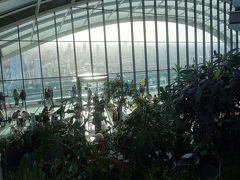 London(1.8) Sky Garden に上る。無料でロンドン市街を一望できるすばらしいところ。
