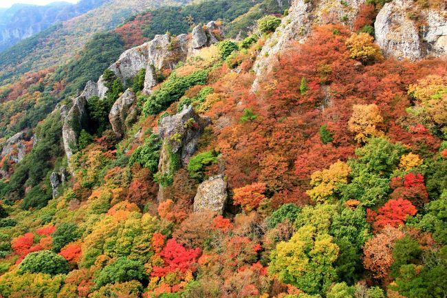 日本の絶景を求めて徳島・高松・岡山へ  (4) 山全体が錦秋の寒霞渓