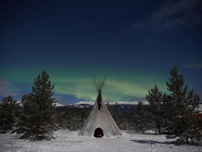 【オーロラ鑑賞】<br />ロッジ滞在で真夜中オーロラ鑑賞できるハードルの低い所ということで、ホワイトホースのKaleido Lodge Yukonさんに。<br /><br />&#9992;︎1日目<br />羽田→バンクーバー(ANA)→ホワイトホース(エアノース)<br />乗り継ぎたっぷりの為、バンクーバーはめちゃくちゃ暇。<br />電車で5分もしないアウトレットに行くことも考えたけど、スーツケースもあるので大人しくバンクーバー空港待機<br /><br />&#9992;︎2日目<br />真夜中にホワイトホース到着。<br />Kaleido Lodge Yukonからお迎えに来て下さりそのままロッジへ。<br />この日からオーロラ鑑賞をしましたが、残念ながら雲が多くオーロラ鑑賞できず。<br /><br />&#9992;︎3日目<br />オプションを付けて犬ぞり等冬のアクティビティ参加。<br />夜はオーロラ鑑賞を。<br />この日はうっすらオーロラが出てそれはもうテンションがあがる!!<br />鑑賞1日目が出なかったこともあって「見れてよかった」感が半端ない。<br /><br />&#9992;︎4日目<br />乗り合わせでホワイトホースの街へ。<br />スーパーに言ってお土産購入。<br />スーパーにメープルのクッキー等置いてあり、1箱2ドルくらいなので物凄くオススメ。しかしかさばる。大きい。<br />夜はオーロラ鑑賞。<br />この日は22時30分頃に大きいオーロラが出て、それ以降は常にオーロラが出ているけれども大きいのが来ない、と言った感じ。<br /><br />&#9992;︎5日目<br />帰路。<br />バンクーバー空港は、メープルラウンジを使用。<br />シャワーブース綺麗でした、ご飯はお昼過ぎの使用のため軽食程度、でもビール好きな人は地ビールが5種類あったのでいいかもしれない。<br /><br /><br /><br />【オーロラ鑑賞について】<br />✓3回のチャレンジで2回見れました。<br />しかし、オーロラは目視がなかなか難しいのでカメラ越しで確認している方が多数。<br />&#128247;iPhoneの夜景モードもそこそこに撮れるがミラーレス、一眼はやはり綺麗に撮れる。満月前だった為月明かりも明るくiso800,ss10,F2.8やiso1600,ss5,F2.8で撮りまくってました。<br /><br />✓オーロラが見れるかは本当に運。<br />私は2回見れましたが帰りの日に粘って見れた方にもお会いしました。<br />✓寒いと言っても-10度程度だったので外で待ち続けることができました。これ、もっと寒かったらダメだったろうなぁと。(風もなかったし)<br /><br /><br /><br />【Kaleido Lodge Yukonについて】<br />✓もう、日本人向け。<br />ご飯美味しいし、日本人向けの味付け。<br />スタッフも日本人で安心感あり。<br />✓オーロラ鑑賞はティンピーをつけるとソーセージやマシュマロが食べれて美味しい。