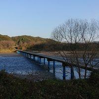 【四国の自然を満喫する旅】Day2高知市-足摺岬