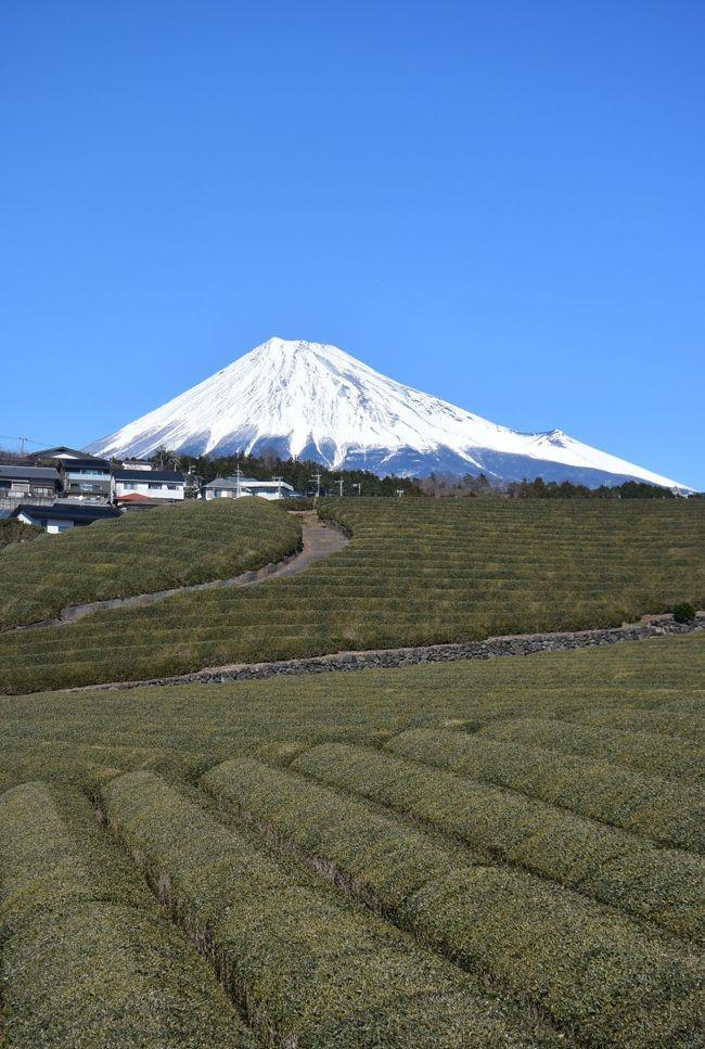 月に1度の富士滞在。