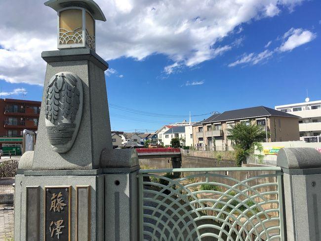 2018年8月、神奈川県の藤沢市に行ってきました。<br /><br />東海道五十三次の第6の宿場・藤沢宿があった街です。<br /><br />街道跡は、繁華街になっているJR藤沢駅周辺より少し北にあります。<br />なので、まずは街道近くにある小田急の藤沢本町駅まで行きました。<br />駅を出て数分南へ坂道を登ると、そこはもう東海道。<br /><br />川崎で見たのと同じように、街灯に「藤沢宿」の幟が付いてました。<br />路上や看板に史跡への道案内や説明があってわかりやすかったです。<br /><br />その後は西へ2kmほどの所にある湘南モールフィル、湘南T-SITEへ。<br />そこでお昼を食べたり商業施設内をうろついたりしてきました。<br />