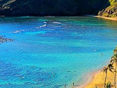 Oahu-12 ハナウマ湾展望台 自然保護の規制-厳格に ☆オアフ島周遊ツアー・下車15分