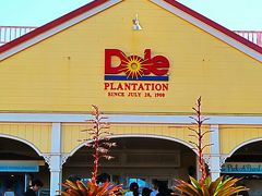 Oahu-15  ドール・プランテーション 休憩/買物 ☆パイナップルの各種見本ガーデンも